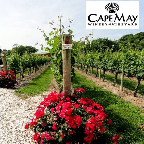 Cape May Winery and Vineyard
