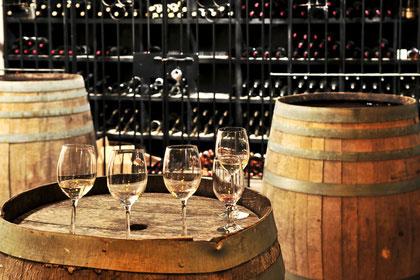 Casavino Custom Winery